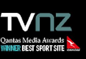 Logo canal 1, NZ